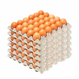 Decorativo huevos de color